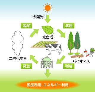 カーボン ニュートラル と は 脱炭素社会を実現する「カーボンニュートラル」。温室効果ガスの排出...